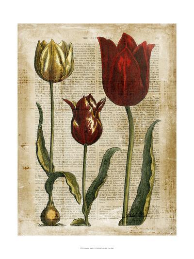 Antiquarian Tulips II--Art Print