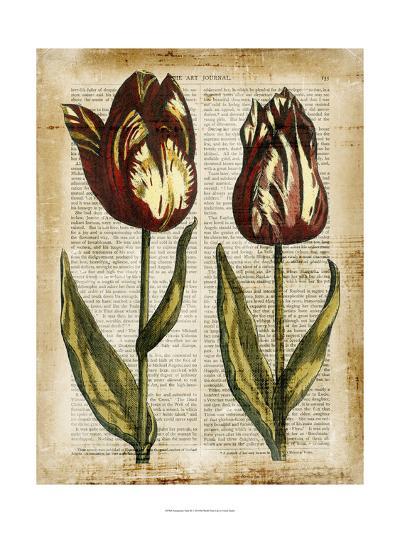 Antiquarian Tulips III--Art Print