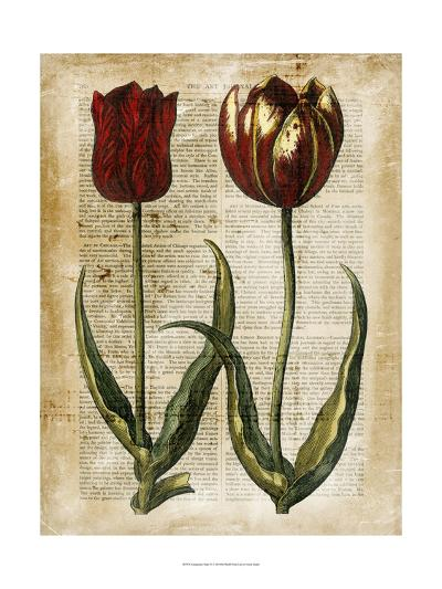 Antiquarian Tulips IV--Art Print