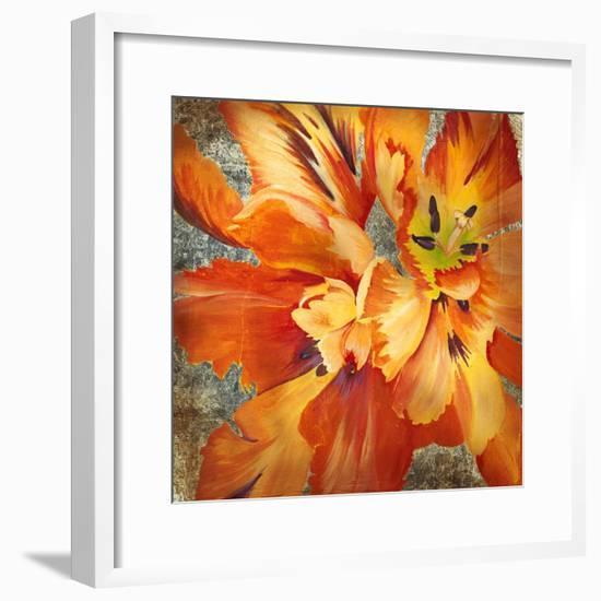 Antique Botanicals II-Liz Jardine-Framed Art Print