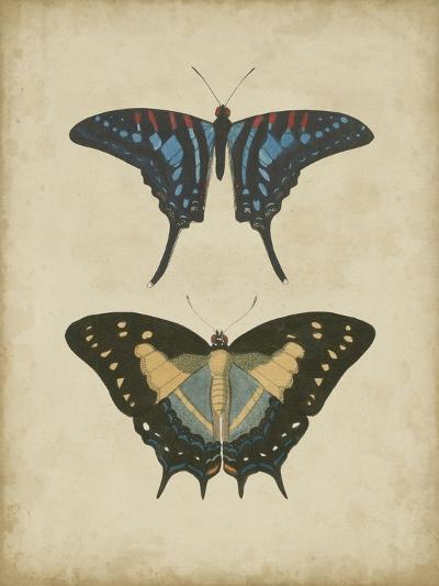 Antique Butterfly Pair III-Vision Studio-Art Print