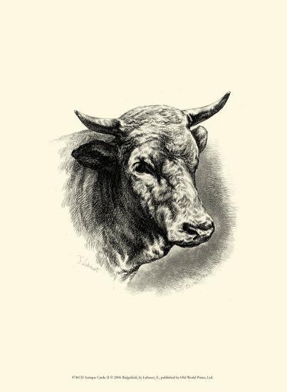 Antique Cattle II-F^ Lehnert-Art Print
