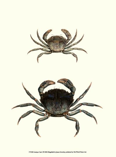Antique Crab I-James Sowerby-Art Print