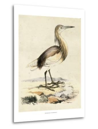 Antique Heron I