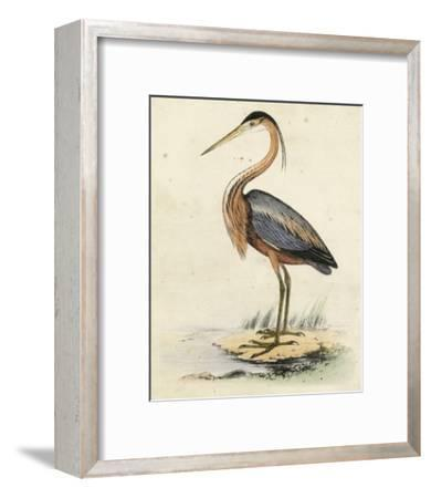 Antique Heron II