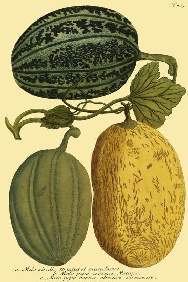 Antique Melons I--Art Print