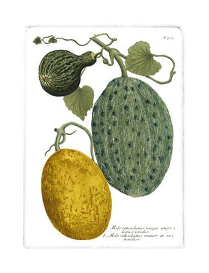 Antique Melons II-Weimann-Art Print