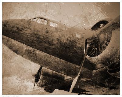 Antique Plane I--Art Print