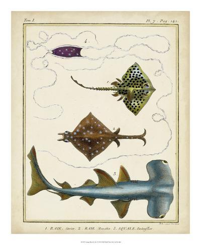 Antique Rays & Fish I-Chevillet-Giclee Print