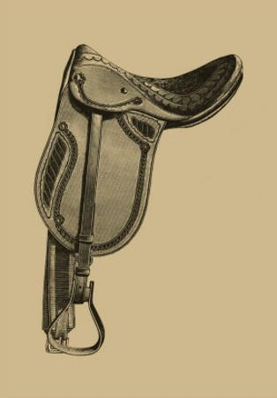 Antique Saddle II