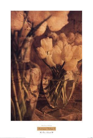 https://imgc.artprintimages.com/img/print/antique-tulips-i_u-l-f8njqa0.jpg?p=0