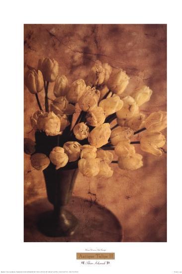 Antique Tulips II-Thea Schrack-Art Print