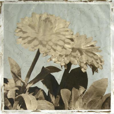 Antiqued Floral and Sky II-Megan Meagher-Giclee Print