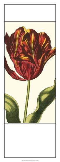 Antiqued Tulip Panel I--Giclee Print