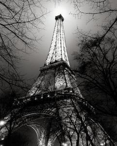Sa Majest�a Tour Eiffel by Antoine Carrara