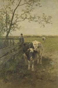 Milkcows by Anton Mauve