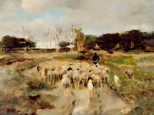 Sheep Flock by Anton Mauve