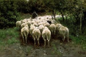 Sheep in the Forest, 19th Century by Anton Mauve