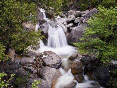 Waterfall in Woods, Yosemite National Park, UNESCO World Heritage Site, Yosemite, California, USA