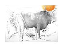 Donkeys, 1989-Antonio Ciccone-Giclee Print