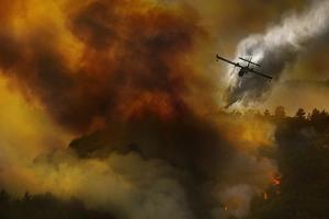 Fire in National Park of Cilento (Sa) - Italy by Antonio Grambone