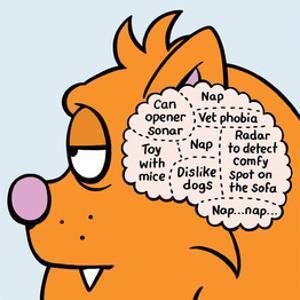 Cat Thoughts - Antony Smith Learn To Speak Cat Cartoon Print by Antony Smith