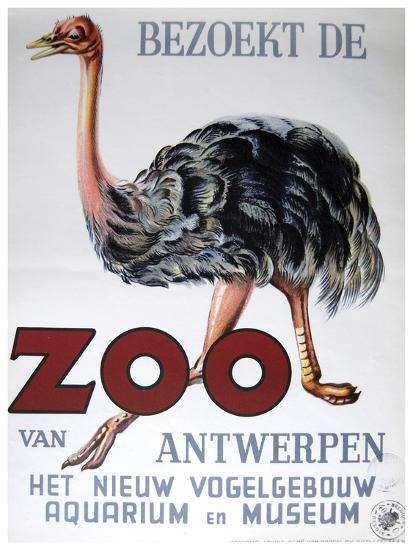 Antwerp Zoo-Vintage Apple Collection-Giclee Print
