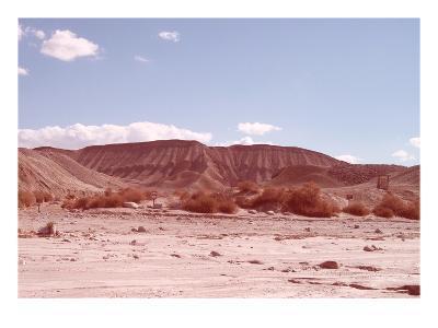 Anza Borrego Desert-NaxArt-Art Print