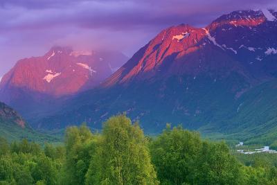 Aplenglow Sunset over Polar Bear Peak and Eagle Peak-Design Pics Inc-Photographic Print