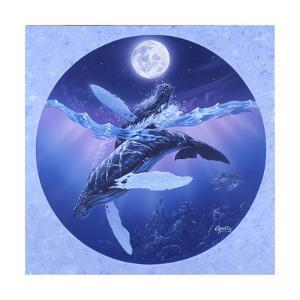 Humpback Lullaby by Apollo