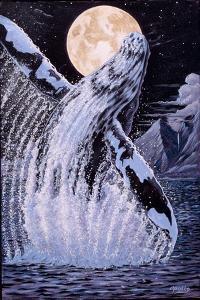 Moondance by Apollo