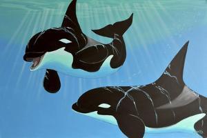 Orca Play by Apollo