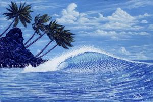 The Perfect Wave by Apollo