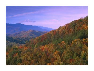 Appalachian Mountains ablaze with fall color, Great Smoky Mountains National Park, North Carolina-Tim Fitzharris-Art Print