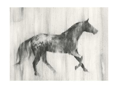 Appaloosa Study I-Ethan Harper-Art Print