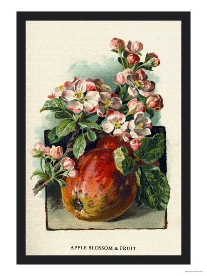 Apple Blossom and Fruit-W^h^j^ Boot-Art Print