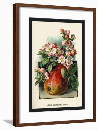 Apple Blossom and Fruit-W.h.j. Boot-Framed Art Print