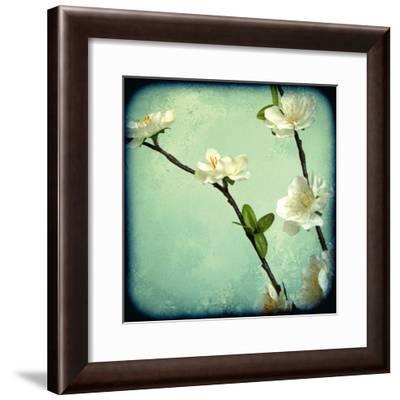 Apple Blossom I-Rossana Novella-Framed Giclee Print