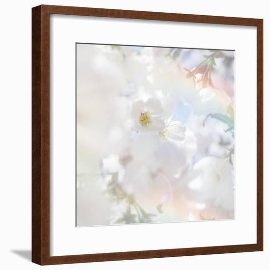 Apple Blossoms 03-LightBoxJournal-Framed Giclee Print