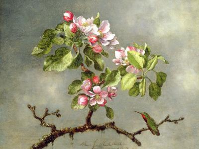 Apple Blossoms and a Hummingbird, 1875-Martin Johnson Heade-Giclee Print