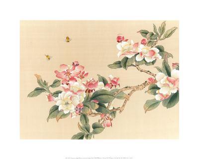 Apple Blossoms--Art Print
