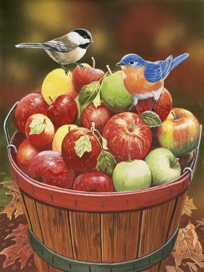 Apple Harvest-William Vanderdasson-Giclee Print