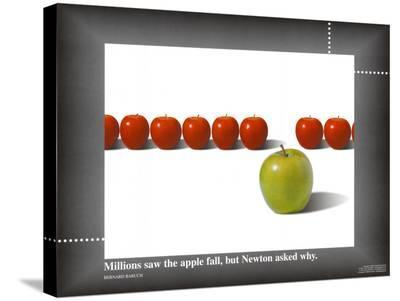 Apple / Newton--Stretched Canvas Print
