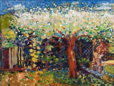 Apple Tree Blossom-Marco Cazzulini-Giclee Print