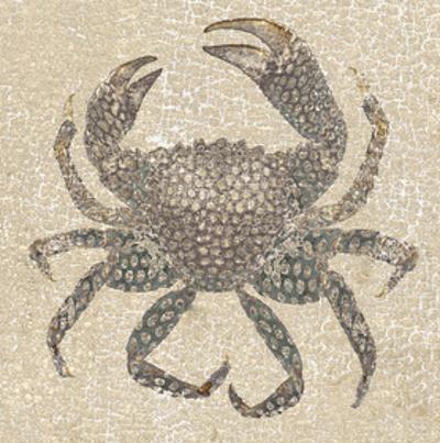 Aqua Marinr VI
