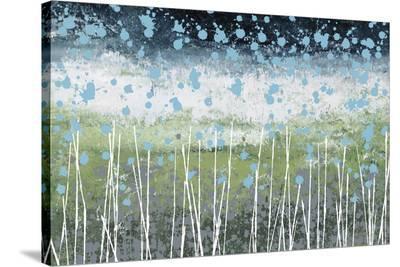 Aqua Splash-Liz Nichtberger-Stretched Canvas Print