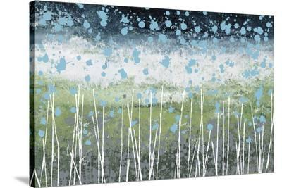 Aqua Splash-Liz Nichtberger-Stretched Canvas Print