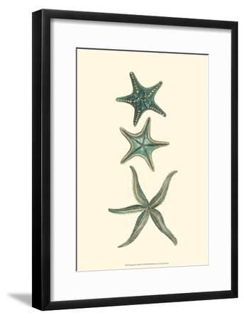 Aquamarine Starfish I