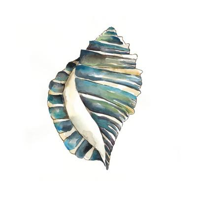 https://imgc.artprintimages.com/img/print/aquarelle-shells-i_u-l-q11k11j0.jpg?p=0
