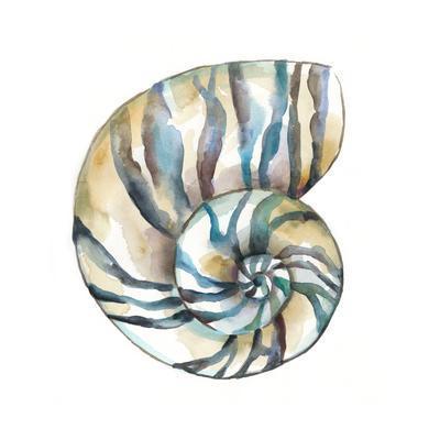https://imgc.artprintimages.com/img/print/aquarelle-shells-ii_u-l-q11k17l0.jpg?p=0